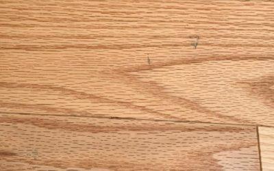 My Kitchen Floor